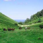 LA SOULE TRAPPEUR : une itinérance pédestre de ferme en ferme