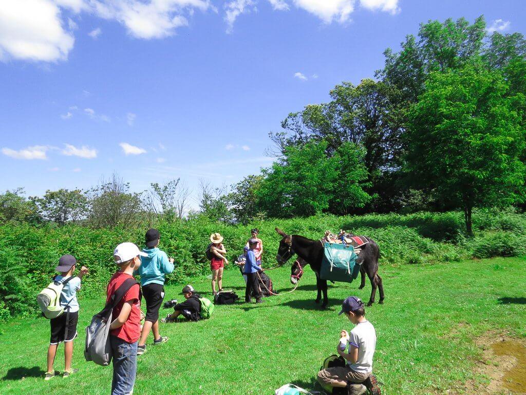 la préparation des ânes pour le bivouac