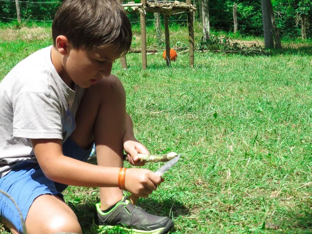 apprendre à utiliser un opinel l'outil indispensable d'un bon trappeur