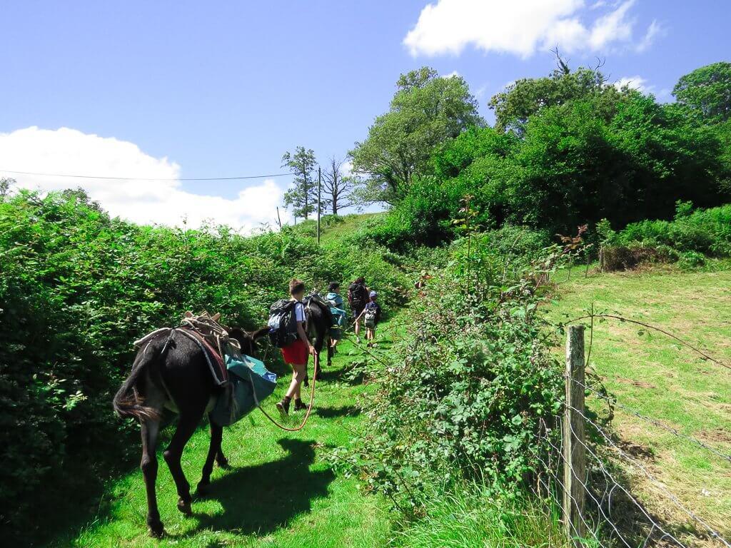 partir comme les trappeurs avec des ânes en pleine montagne