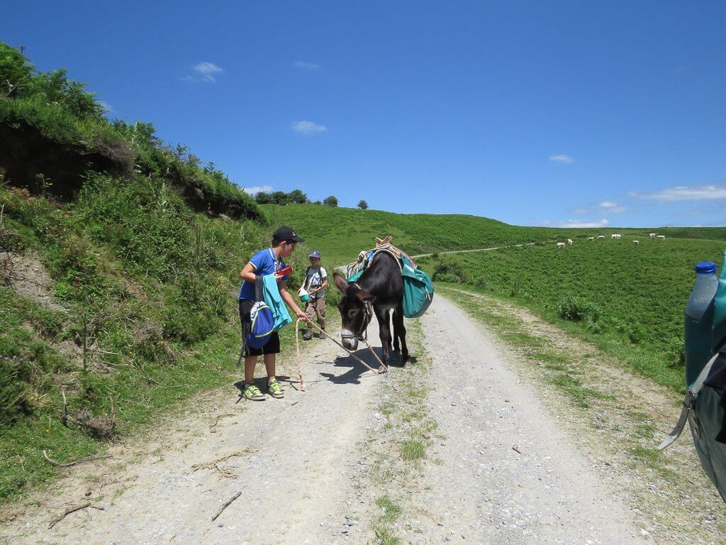 bivouac avec ânes
