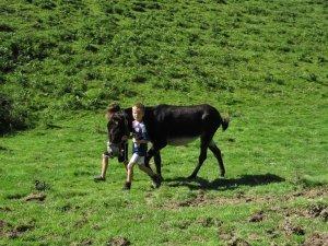 L'itinérance de ferme en ferme
